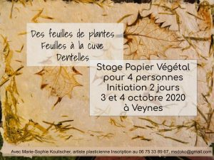 stage initiation octobre 2020